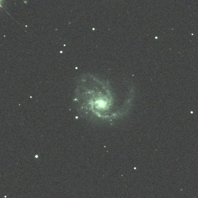 M99crop