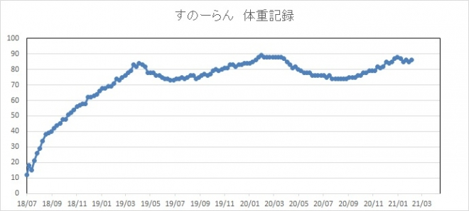 _20210206