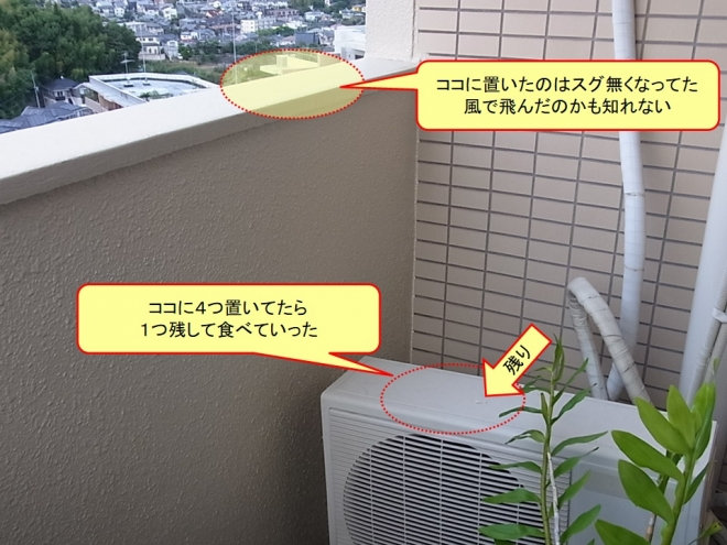 Photo_20200928180101